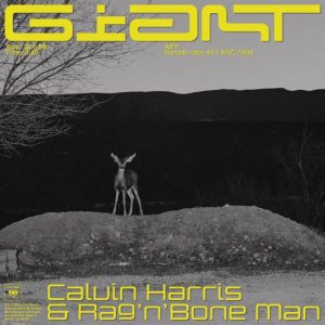 Giant de Calvin Harris